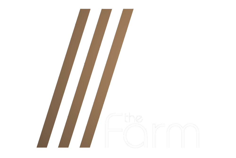 The Farm Studio – Visual